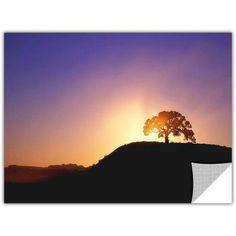 Dean Uhlinger Dust Cloud Sunset, Art Appeelz Removable Wall Art Graphic, Size: 36 x 48, Black