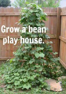 let the children play: garden or bean pole teepee