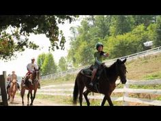 Five Oaks Riding Stables- Pigeon Forge, Sevierville & Gatlinburg Riding Stables across from Five Oaks Mall