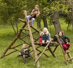 1000+ images about Jungle gym tree house on Pinterest | Jungle gym ...