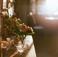 Imagem de flowers, rose, and photography Tableaux D'inspiration, Illustration Inspiration, Vie Simple, Yennefer Of Vengerberg, Antique Roses, Slow Living, Morning Light, Morning Mood, Light And Shadow