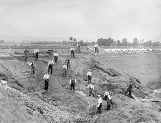 """Dammbruch MLK bei Hahlen. Das Bild zeigt die Arbeiten an einer Rutschung der Innenböschung des Kanals. Da die Arbeiten am Kanal bis Juli 1915 liefen und das Bild am 20.07.1915 aufgenommen wurde (lief unter """"Dammbruch""""), geht der Bearbeiter davon aus, dass noch kein Wasser im Kanal war und es sich dabei um eine Rutschung der südlichen Innenböschung handelt, die vielleicht durch Regen oder erhöhten Grundwasserstand ausgelöst wurde. Dort ist ein Moorgebiet."""