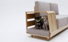 dog sofá