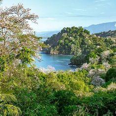 For anyone that might be wondering why so many people love Costa Rica, I'll just leave this right here for you... Por si acaso que alguien se está preguntando por qué tantas personas se han enamorado de Costa Rica, dejo esta foto aquí...  .  .  .  .  .  .  .  #chasinglight #theartofnoticing #momentofmine #liveunscripted #naturallightingphotography #lifeofadventure #lifeiswhatyoumakeit #amor #puravidamae #puravida #lovemycrbc #projectlovemyCR #CRfanphotos #CostaRicaExperts #costaricaiscool...