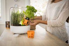 Fiskars Kitchen Garden pöytäpuutarha on saatavana kaupoissa syyskuussa 2013.