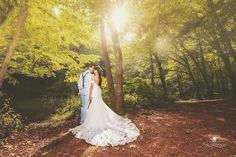 #wedding #photoshoot #jungle