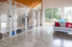Great Images Chic indoor dog kennels in Modern Austin with Dog Door next to Dog . , Great Images Chic indoor dog kennels in Modern Austin with Dog Door next to Dog … , Dog Kennel Designs, Kennel Ideas, Luxury Dog Kennels, Indoor Dog Kennels, Outdoor Dog Kennel, K9 Kennels, Dog Boarding Kennels, Crazy Home, Pet Resort