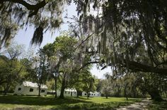 This Is How They Teach South Carolina Students About Slavery |-- Although some of the lesson plans on the website mentioned the horrible circumstances in which slaves lived, the way slavery and slaves were described uses a lot of passive voice and describes why certain African slaves were chosen to do plantation work, as if Europeans would have done the work themselves had they possessed the skills...
