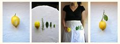 lemons | Zitronen | limoni (c) www.cettinavicenzino.com
