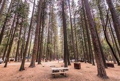 Upper Pines Campground, Yosemite Valley