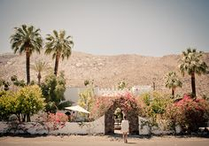 ...a sweet Moroccan-style retreat in Palm Spring...  http://honestlywtf.com/travel/korakia-pensione/
