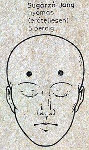 epehólyag akupresszúra pontok Mudras, Acupuncture, Feng Shui, Martial Arts, Massage, Health Fitness, Karma, God, Chinese Medicine