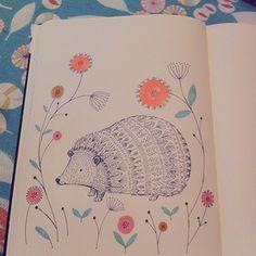 Bethan Janine // hedgehog sketch