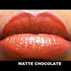 #LAColors lipstick #swatch in Matte Chocolate #DollarTree #GlossaryOfSwatches