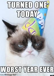 Look on the bright side, Grumpy Cat!