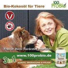 Kokosöl für Tiere 1000ml - ein natürlich wirksamer Schutz gegen Zecken, Milben, Parasiten & Fellpflege ohne Chemie (Hund, Katze od. Pferd): Amazon.de: Haustier