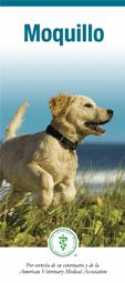 Moquillo (Canine Distemper)