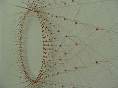 SHANNON RANKIN, VERMONT STUDIO CENTER 2010: road-trip radiolaria.