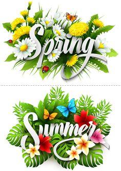 Display Board - Seasons
