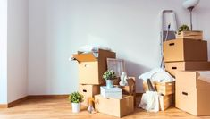 Are you finding the best movers in Calgary Alberta ? Here is the fine home moving company is providing the best movers services at cheapest price. Teaching Overseas, House Relocation, Best Movers, House Shifting, Moving Supplies, Packing To Move, Packing Tips, Buy Boxes, Kids