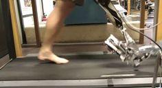 動画:足首のバネを再現する電動義足 AMP-Foot 2.0 - Engadget Japanese