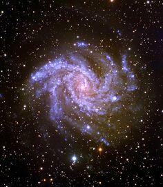 the fireworks galaxy (seen through telescope in Cygnus)