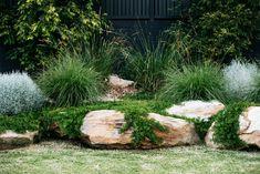 The new look Aussie backyard - Native Plant Project - Outdoor living Side Garden, Garden Edging, Garden Bed, Australian Garden Design, Australian Native Garden, Backyard Garden Design, Garden Landscape Design, Back Gardens, Outdoor Gardens
