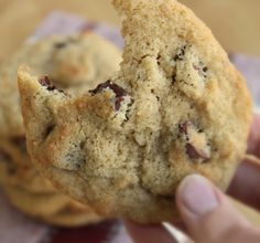 Almond & Coconut Flour Chocolate Chip Cookies