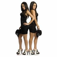 This great The Bella Twins-WWE Lifesized Standup is exactly what you need to add some fun flare to your man-cave or bedroom.  A lifesized standup is the perfect way to add a unique item to your decorating. Our collection of life sized stand ups, standees, fat heads, and cutouts is second to none, whether you are looking for a great character from the WWE or the UFC cardboard standups you have come to the right place. All of our standups are made of cardboard and come unassembled. Some easy assembly is required for all of our cardboard standups, simply follow the included directions and  you can have a full size replica of your favorite WWE or UFC character. We have a great selection of the main characters, including The Rock, Triple H, The Undertaker, John Cena, CM Punk and Rey Mysterio.  And don't forget about our great selection of UFC fighters also.  Be sure to plan ahead when purchasing our cardboard standups because this item is printed to order, which takes 3-4 business days. So please take this into account when ordering your standee.Learn how to  assemble your standup.