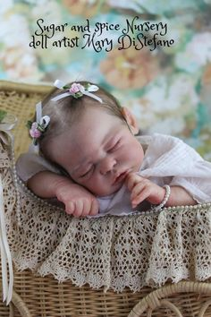 Reborn Baby Girl Quinlynn by Laura Eagles reborned by Doll Artist Mary DiStefano
