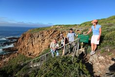 175 steps to discover 162 000 years of our Origins www.humanorigin.co.za #SouthAfrica #Africa #travel #tours #archaeologicaltours #humanorigins Travel Tours, Africa Travel, Origins, South Africa, Dolores Park, Arch, The Originals, Wedding Arches, Bow