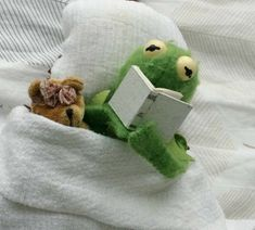 Kermit reading to his teddy bear Cute Memes, Funny Memes, Sapo Kermit, Sapo Meme, Frog Meme, Miss Piggy, Kermit The Frog, Meme Template, Meme Faces