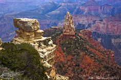 Grand Canyon ... North Rim  inspirationalphotoimages.com