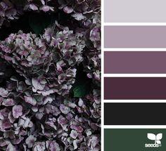 { flora tones } image via: @mijn.grid
