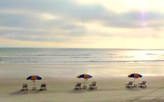 Lots of families like to combine a trip to Disney World with a few days at the beach. Daytona Beach is an ideal choice.   Ask Suzanne: What's the Best Family Beach Near Orlando?   About.com Family Vacations