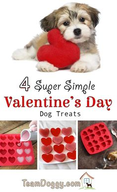 4 Simple Valentine's Day dog treats you can make at home to show your dog you love them. Easy recipes for kids and pets too. Best Treats For Dogs, Healthy Dog Treats, Dog Treat Recipes, Dog Food Recipes, Easy Recipes, Easy Meals For Kids, Kids Meals, Sweet Potato Dog Treats, Valentines Day Dog