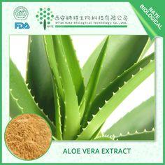 Aloe vera extract http://www.natesw.com/Copy%20of%20Rhodiola%20rosea%20extract