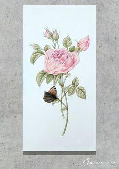 Watercolor roses by maiwaan