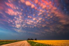 Storm chaser Mike Hollingshead from Nebraska has captured incredible photos of 'bubble clouds' in the sky (shown). Known as mammatus clouds the structures form behind storms. Beautiful Sky, Beautiful World, Beautiful Pictures, Mammatus Clouds, Supercell Thunderstorm, Cumulonimbus Cloud, Dame Nature, Cloud Photos, Night Skies