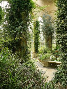 Look at this greenhouse or observatory! There's a pond! I love how the plants look like they're taking over the place. Castle Ashby - Orangery/ Jay Seedy