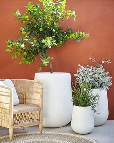 gardens patio Moderno/ARD Gavitella Grey A collaboration between Adam Robinson and Garden Life - Moderno Gavitella pot available in grey and white. Terrace Garden, Garden Pots, Balcony Gardening, Garden Trees, Terrace Decor, Potted Garden, Patio Gardens, Porch Garden, Garden Deco