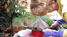 Portland Cement Draped Bird Houses Part One In Ga. Cement Crafts, Concrete Projects, Clay Crafts, Concrete Garden Ornaments, Concrete Leaves, Portland Cement, Garden Borders, Farm Yard, Garden Styles