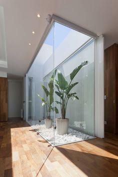Jardines vivientes interiores, simplemente una casa única. El espacio permite que las plantas obtengan luz solar por un hueco en el techo, sin embargo, el compartimento está en la estancia y lo adorna una pared de cristal. ¿Te gusta?