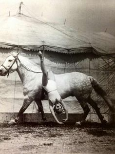 """Gracie Hanneford 1937 was one of the circus performers in her families travelling show """"The Riding Hannerfords"""". Cirque Vintage, Vintage Circus Photos, Photo Vintage, Vintage Photographs, Vintage Circus Performers, Vintage Pictures, Vintage Images, Old Circus, Night Circus"""