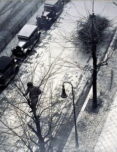 Laszlo Moholy-Nagy - Sans Titre, vers 1930