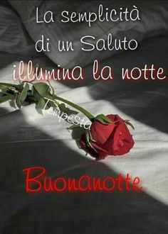it Italian Life, Good Night, Blessed, Genere, Wallpaper, Facebook, Sayings, Smiley, Messages