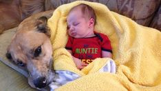 With their adorable powers combined, these babies and their doggy besties could totally take over the world…As long as it's after nap time. Baby Pictures, Cute Pictures, Cute Baby Sleeping, Be My Baby, Baby Dogs, I Laughed, Besties, Cute Babies, Lol