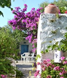 Paros Greek Islands
