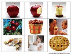 Appel printpakket  Domino blz 5 6  Tellen tot 5 blz 13 14  Patroon leggen blz 14 15  Memorie 6 kaartjes blz 18  Appel met cijfers 1-10 blz 19 20