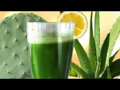 Cactus Aloe Smoothie, the SUPER Longevity drink w Aloe Vera & Prickly Pear Nopales Prickly Pear Juice, Prickly Pear Cactus, Healthy Smoothies, Healthy Drinks, Smoothie Recipes, Healthy Foods, Markus Rothkranz, Vitamin Packs, Pear Fruit